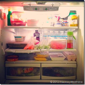 fridge 012013