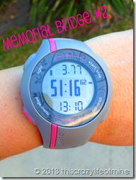 memorial bridge 2