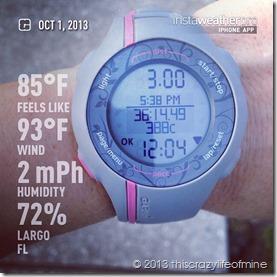 week 7 tuesday run