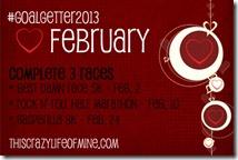 goalgetter2013 february goals INST