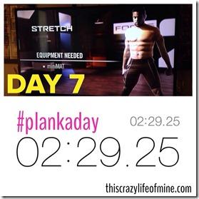stretch plank 020914